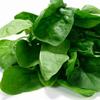 Kataraktanın müalicəsində E vitamininin rolu