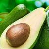 Kanadalı alimlər avokadonu müalicəvi dərman hesab edir
